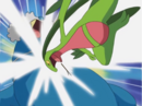 Ash Grovyle Quick Attack.png