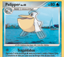 Pelipper (Grandes Encuentros TCG)
