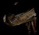Żuwaczki pełzacza
