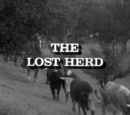 The Lost Herd
