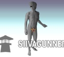 SiIvaGunner