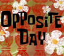 Opposite Day (gallery)