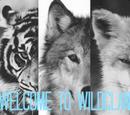WildClan (Rustyxx1)