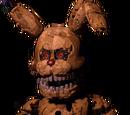 Torture Spring Bonnie