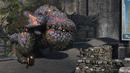 Eruptodon 3.png