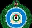 Военно-воздушные силы Объединённых Арабских Эмиратов