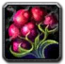 Inv misc food 104 tundraberries.png