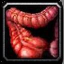 Inv misc organ 05.png