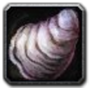 Inv misc shell 01.png