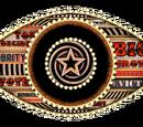 Celebrity Big Brother 17 (UK)