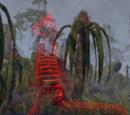 Der gezogene Giftzahn