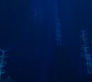 Blood Kelp Zone