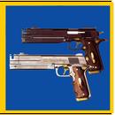 DMC icon.png