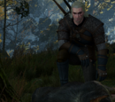 The Witcher 3 secondary quests