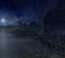 The Witcher images — Loading screens