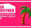 Big Brother 19 (US)