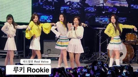 Heejindot/joy is back !!!