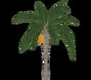 Queen Palm (Aurora Designs)