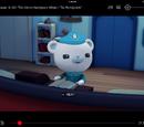 Captain Barnacles Bear/Gallery