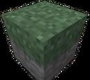 Overgrown Stone