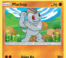 Machop (Albor de Guardianes 62 TCG)