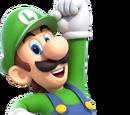 Luigi (Canon)/Metal Mario875