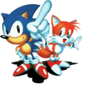 Sonic and Tails 2.png