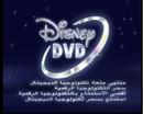 Disney DVD Arabic logo.png