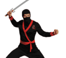 Giant Ninja