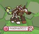 Madmad1022/Scrufffffffffffffff