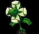 Carbaplant