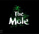The Mole (New Zealand)