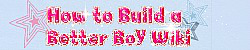 How to Build a Better Boy Wiki