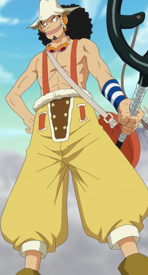 Usopp - The One Piece Wiki - Manga, Anime, Pirates ...