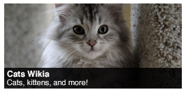Cats_wiki_spotlight.png