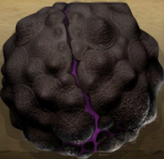 Dragon Eggs - How to Train Your Dragon Wiki